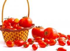 吃番茄10大禁忌:不可与黄瓜同食